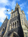 Crow flying over church Royalty Free Stock Photo