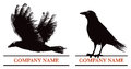 Crow logo an illustration set of a flying and standing Stock Photos