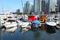 Croweded marina in downton Vancouver BC Canada. Royalty Free Stock Photos