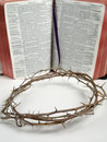 The crown of thorn with a bible Royalty Free Stock Photo