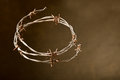 Crown of thorns on the dark background Stock Images