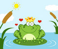 Crowned frog prince on a leaf in lake Royalty Free Stock Images