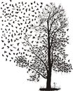 Crows fly away from the tree Royalty Free Stock Photo