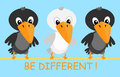 Crows vector illustration of two black and one white cartoon be different concept Stock Image