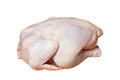 Crude chicken isolated on white background Stock Photography