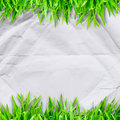 Crumpled paper on green grass and copyspace for text Royalty Free Stock Photo
