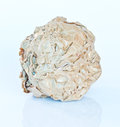 Crumpled paper from recycled materials or white background Royalty Free Stock Images