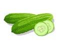 Crunchy cucumber Royalty Free Stock Photo