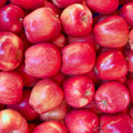 Crunchy red apples closeup Royalty Free Stock Image