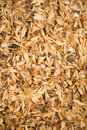 Crushed grains Stock Images