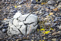 Crushed rock close up image of a by the glacier in the south of iceland Stock Photography