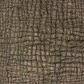 Crust intersecting dry of a large tree Stock Photography