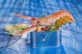 Crustacean canned presentation of a with mixed vegetables in box Royalty Free Stock Photography