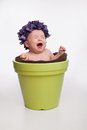 Crying baby girl sitting in a flower pot month old wearing purple hydrangea hat and lime green Royalty Free Stock Photography