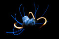 rock crystal blue light painting Royalty Free Stock Photo