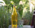 Crystal bottle and glass Royalty Free Stock Photo