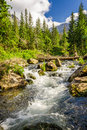 Crystal clear water from the mountains in summer Stock Image