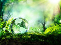Crystal globe on moss in a forest
