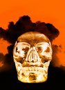 Crystal skull Royalty Free Stock Photography