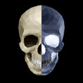 Crystal skull in two colors on black background color variations Royalty Free Stock Image