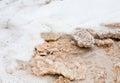 Crystalline salt on beach of Dead Sea Stock Photography