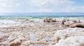 Crystalline salt on beach of Dead Sea Royalty Free Stock Photos