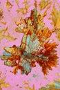 Crystallized ascorbic acid Royalty Free Stock Photo