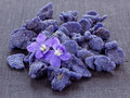 Crystallized violets Stock Photos