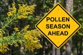 Cuation - Pollen Season Ahead Royalty Free Stock Photo