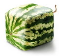 Cubic watermelon Royalty Free Stock Images