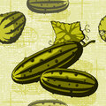 Cucumber on a braided background Stock Photos