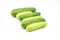 Cucumber cucumis sativus green fresh on white background Royalty Free Stock Photos