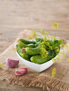 Cucumber fresh and dill in bowl selective focus Stock Photography