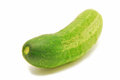 Cucumber isolated on white background Stock Photography
