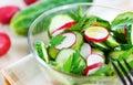 Cucumber and radish salad Royalty Free Stock Photo
