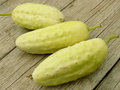 Cucumbers fresh harvested white home grown Stock Photos
