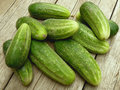 Cucumbers some fresh harvested on old wooden background Royalty Free Stock Photos