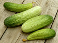 Cucumbers some fresh harvested on old wooden background Royalty Free Stock Photography