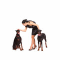 Cuddle elegant young woman with two female doberman studio shot Stock Images