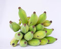 Cultivated banana group of green and yellow Royalty Free Stock Image