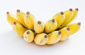Cultivated banana photos ripening appetizing Royalty Free Stock Photography
