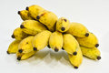 Cultivated banana thai bananas on white background Stock Images