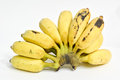 Cultivated banana thai bananas on white background Royalty Free Stock Photo