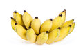 Cultivated banana on white background Royalty Free Stock Photos