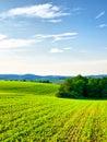 Kultivovaná krajina