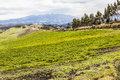 Cultivated fields on slopes of the ecuadorian andes Stock Image