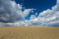 Cultivated land with dramatic sky landscape agriculture field Stock Image