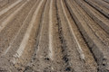 Cultivated soil fresh forrow plough in Royalty Free Stock Image