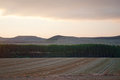 Cultivated weat fields at dusk la rioja spain Stock Photo