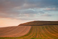Cultivated weat fields at dusk la rioja spain Royalty Free Stock Photography